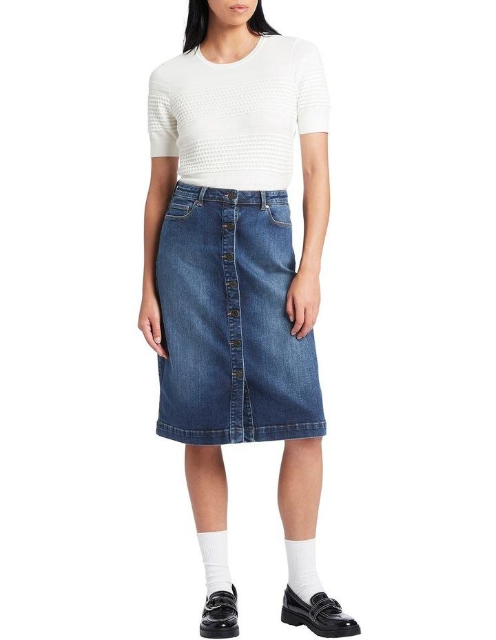 Auburn Denim Skirt image 1