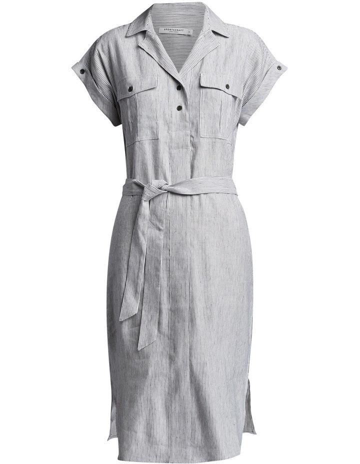Rosy Stripe Dress image 4