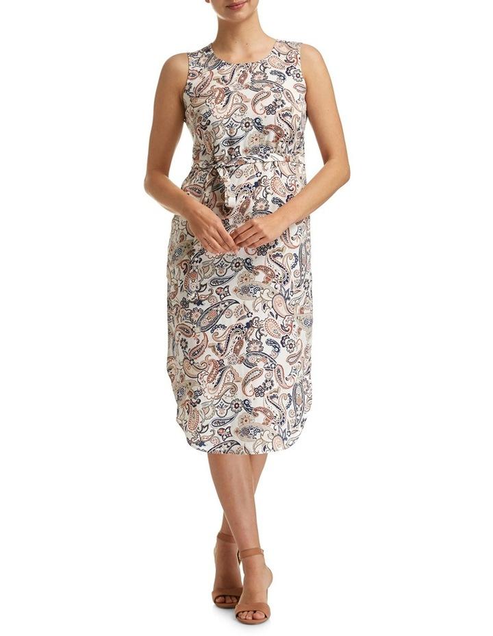 Adele Paisley Dress image 1