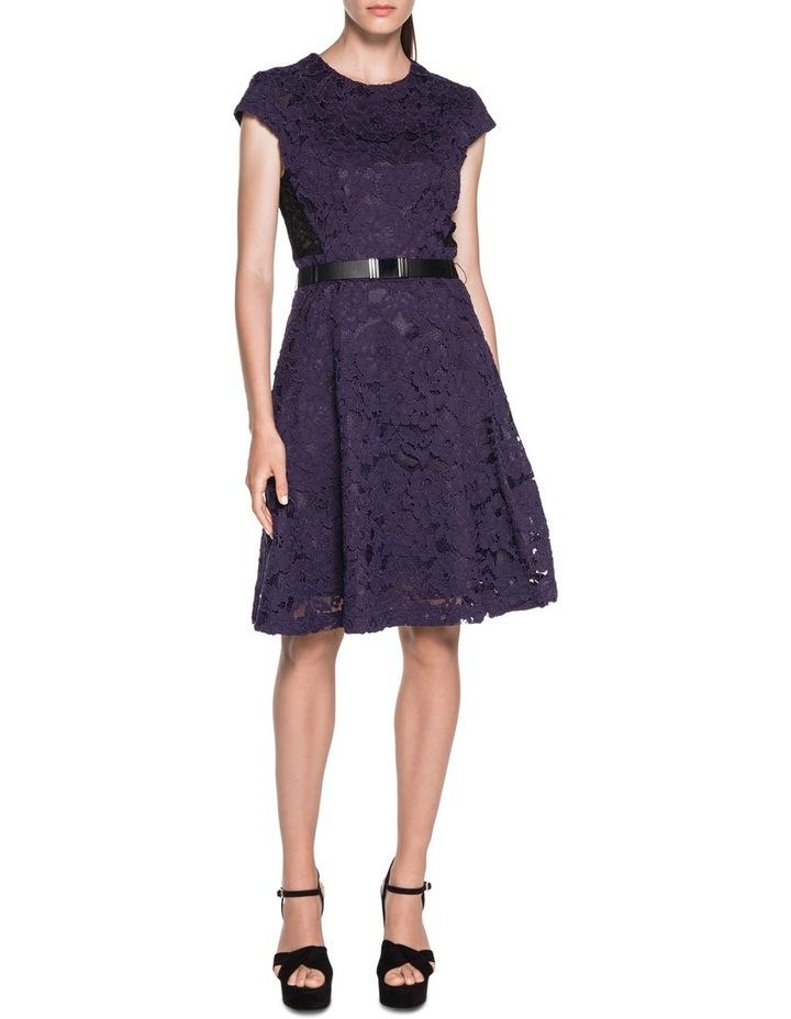 Contrast Lace Dress image 1