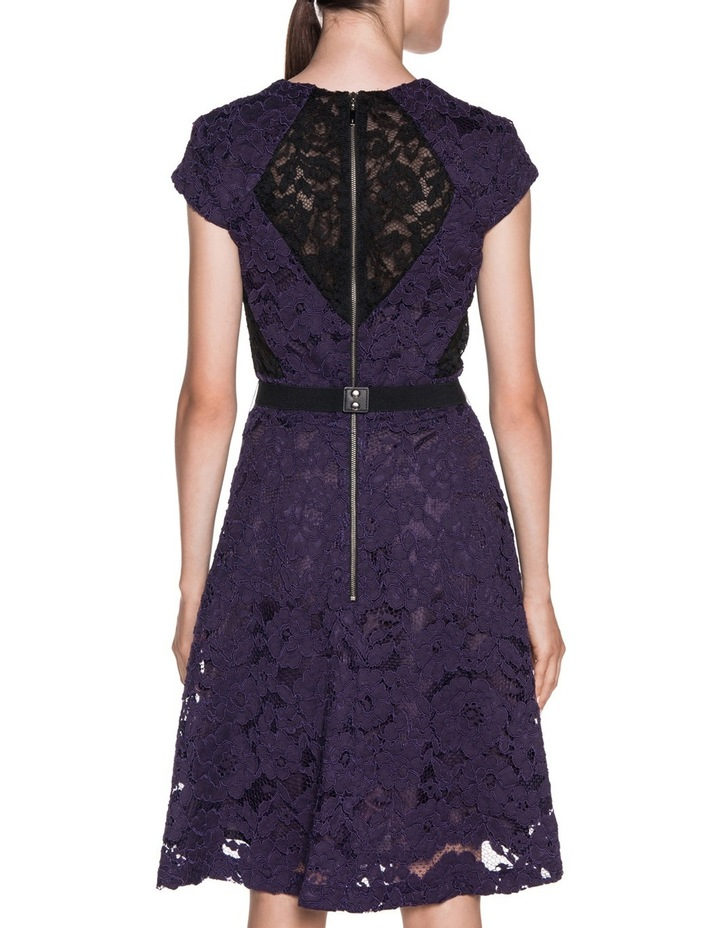 Contrast Lace Dress image 3