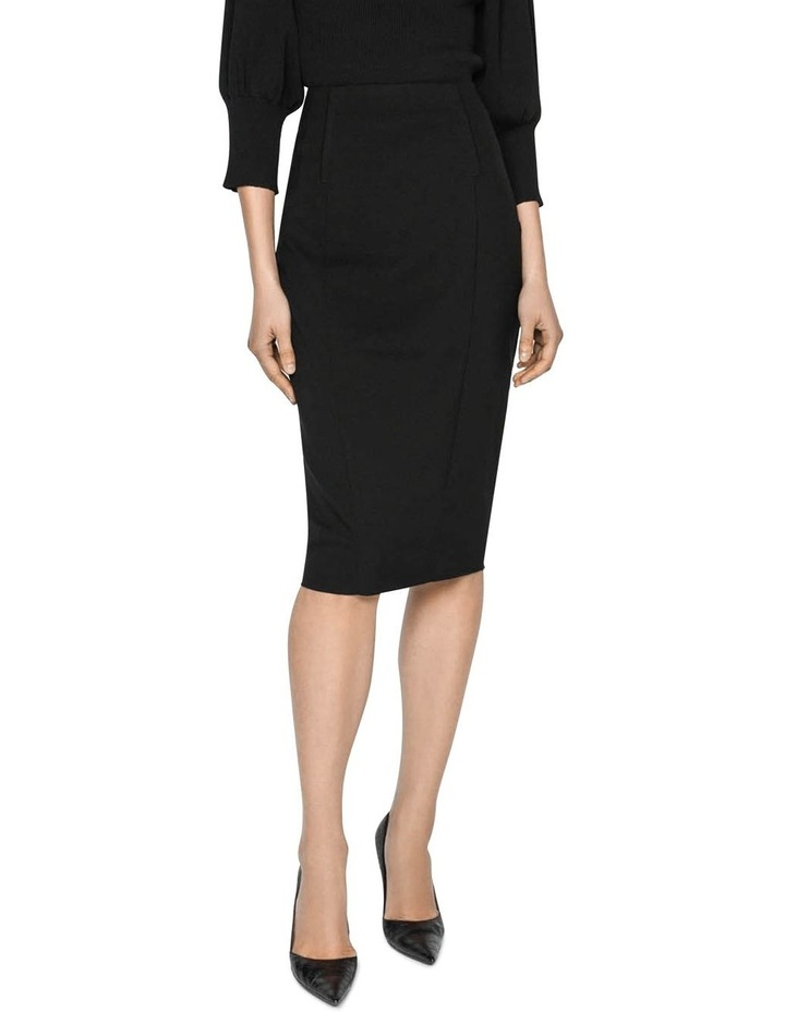 Panelled Pencil Skirt image 1