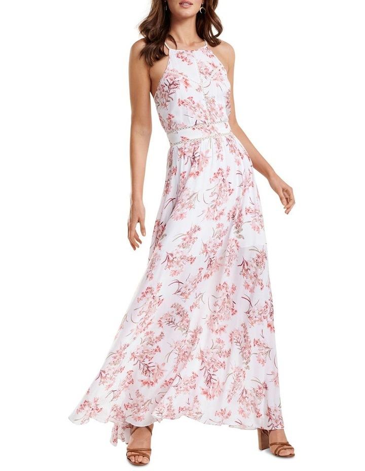 Evelyn Spliced Trim Maxi Dress image 1
