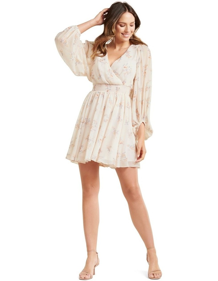 Peyton Blouson Sleeve Skater Dress image 5
