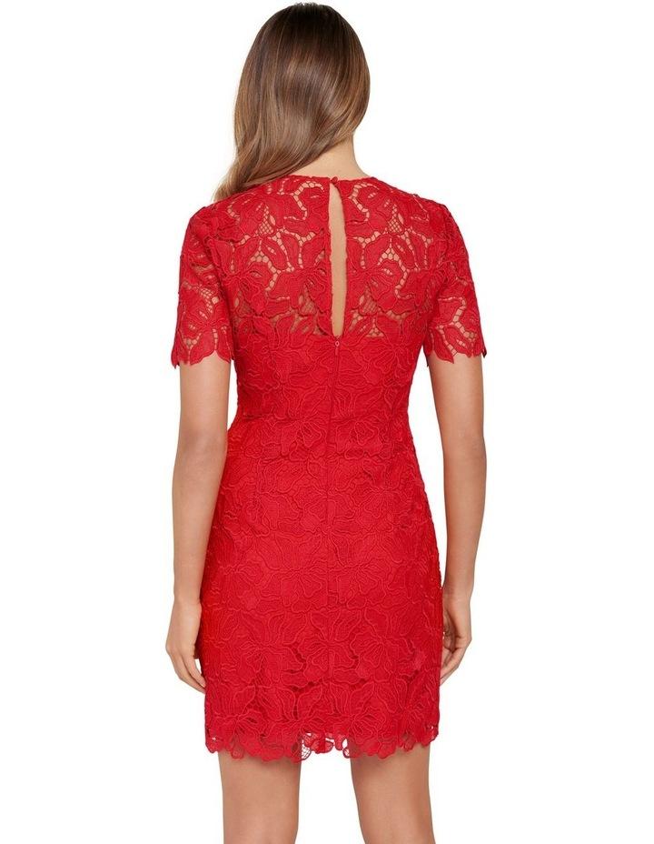 Tayla Lace Mini Dress image 3