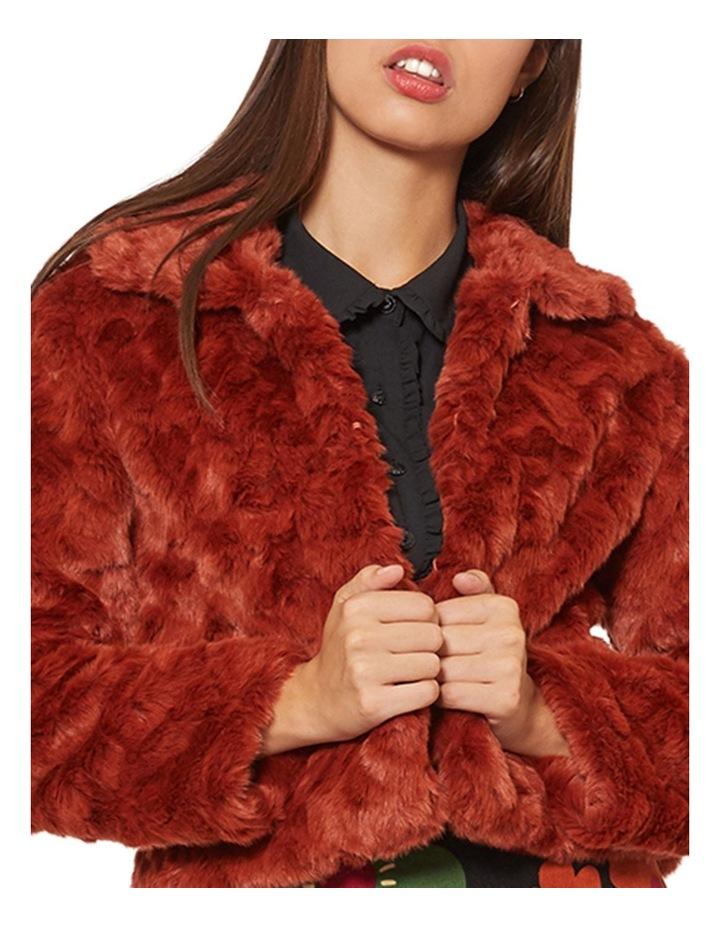 Penelope Fur Jacket image 4