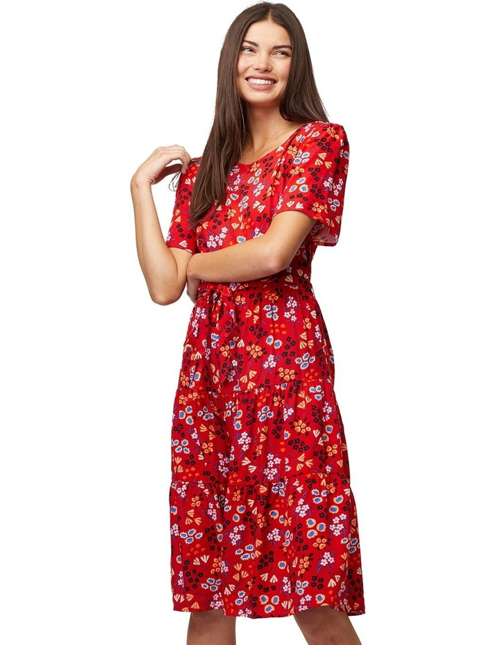 Stacy Dress image 1