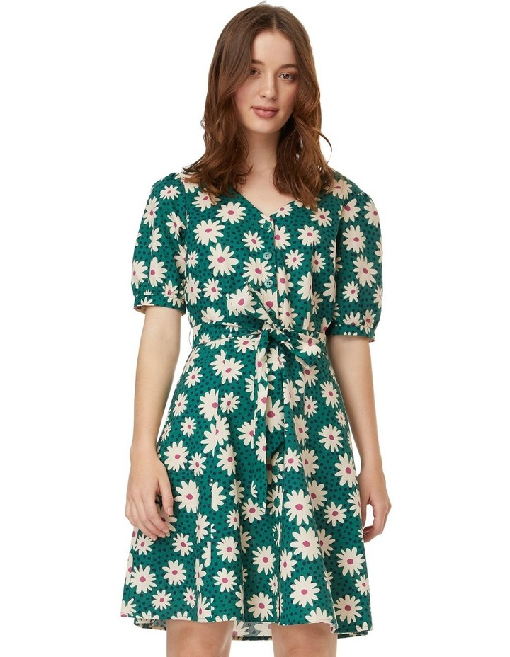 Delaney Dress image 1