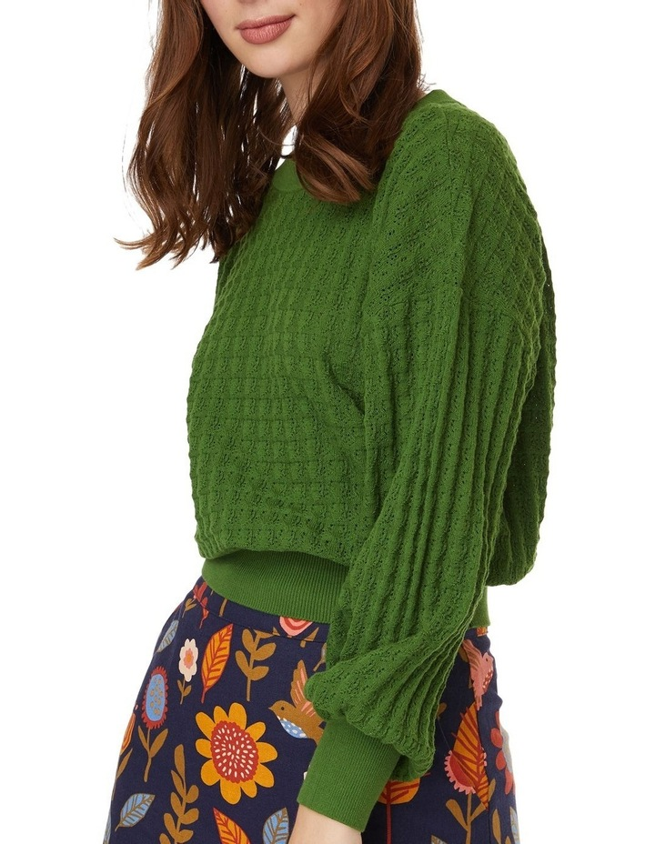 Isabella Sweater image 4