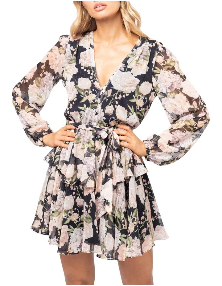 Aine Mini Dress image 1