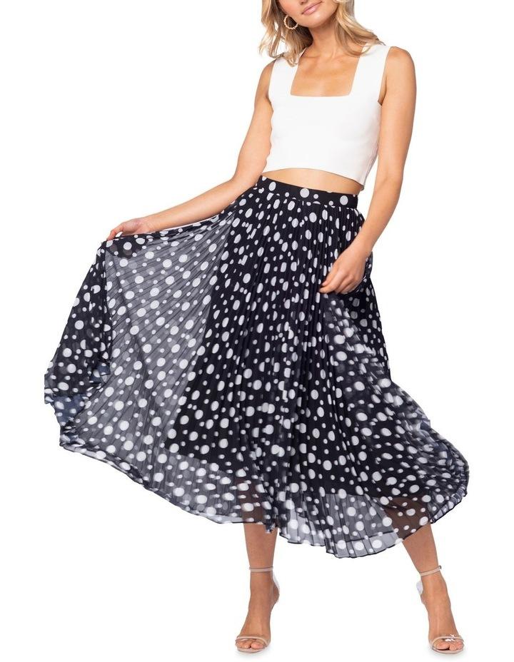Ambrosio Maxi Skirt image 1