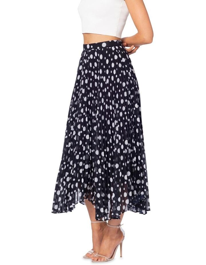 Ambrosio Maxi Skirt image 2