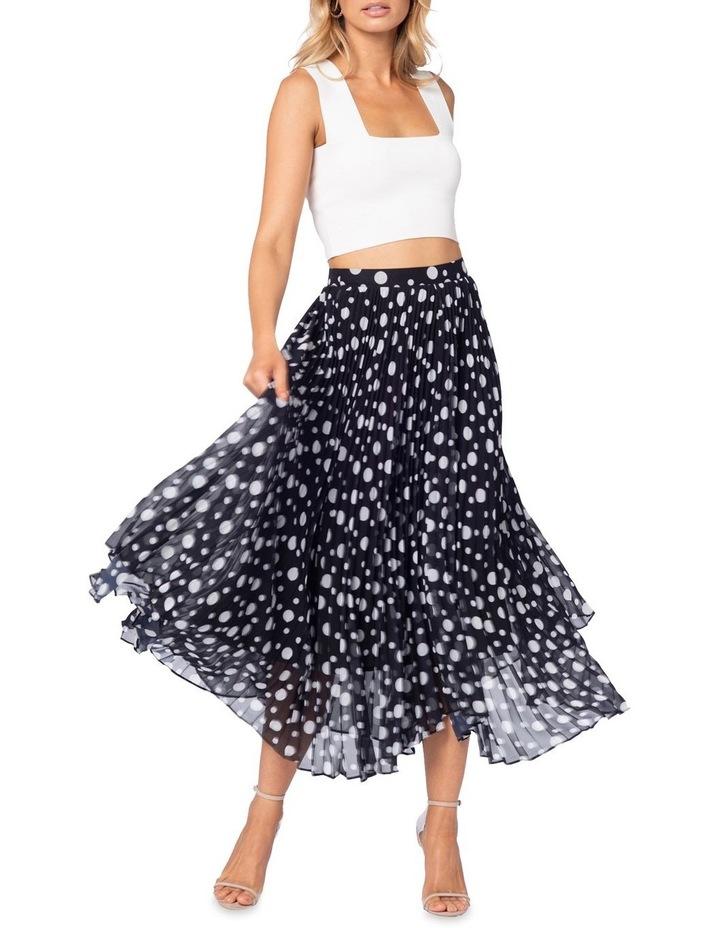Ambrosio Maxi Skirt image 4