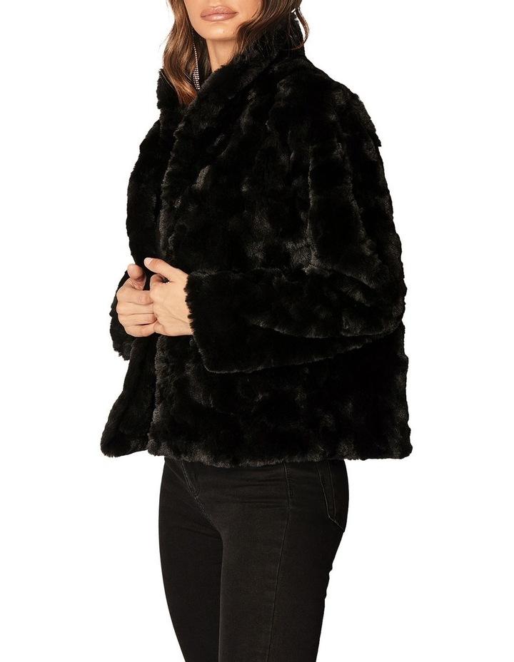 Sable Jacket image 3