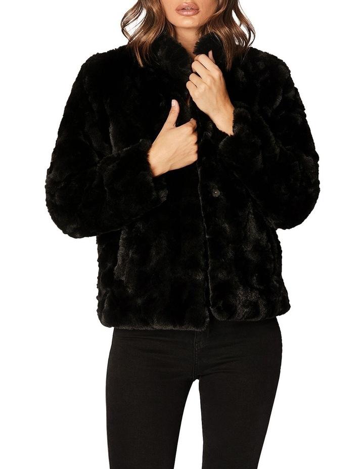 Sable Jacket image 5
