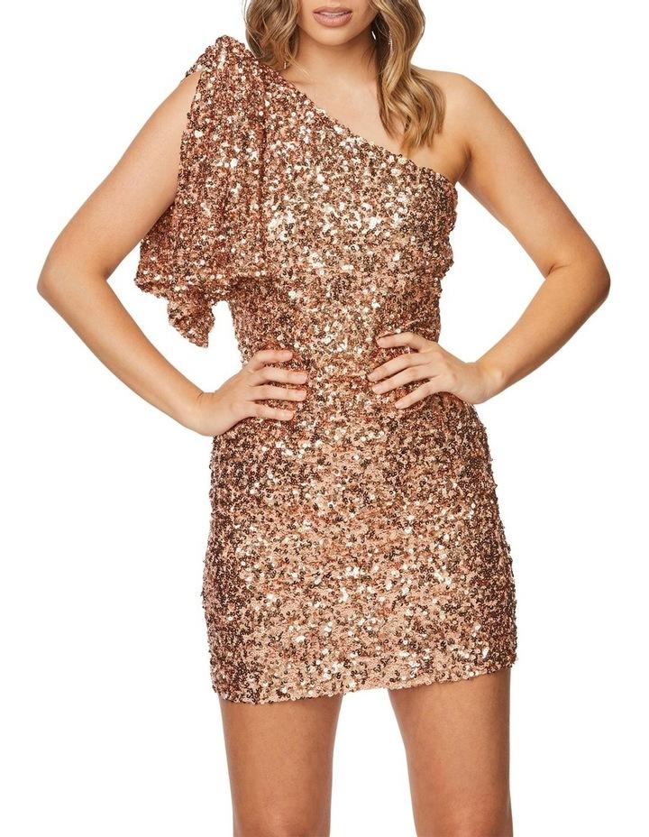 Rosalinda Mini Dress image 1