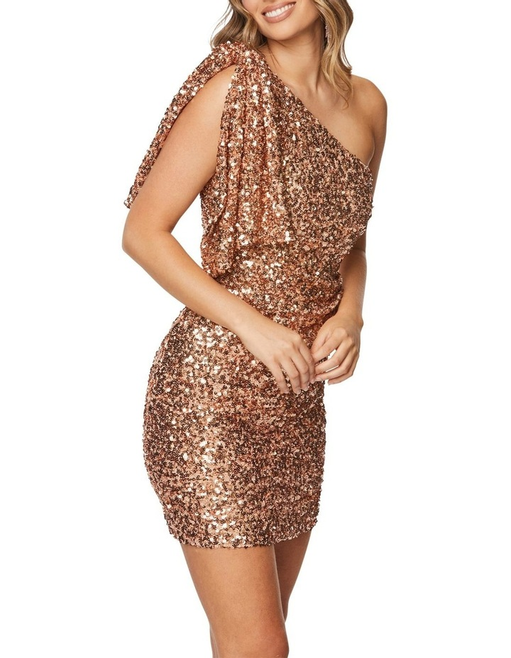 Rosalinda Mini Dress image 2