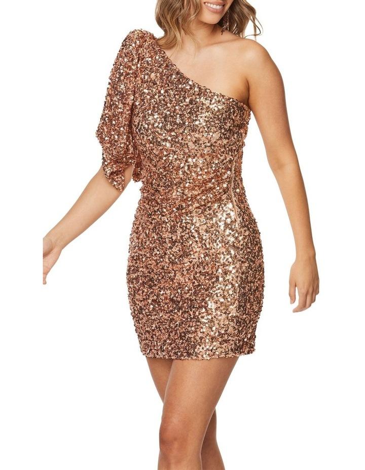 Rosalinda Mini Dress image 4