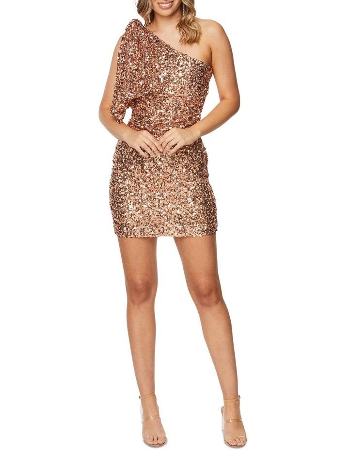 Rosalinda Mini Dress image 6