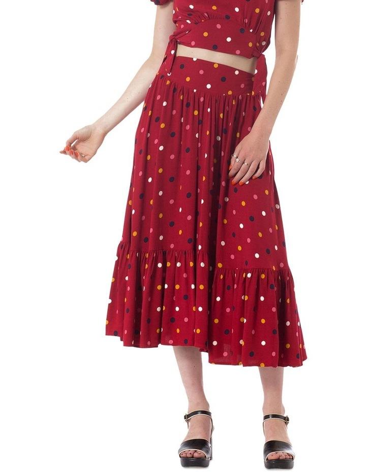 Confetti Skirt image 1