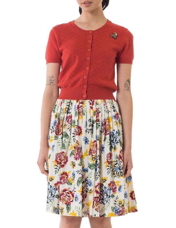 Jane Skirt image 1