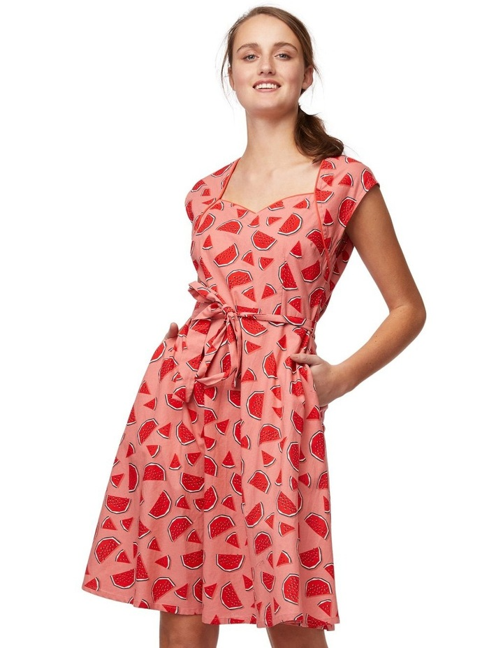 One In A Melon Dress image 1