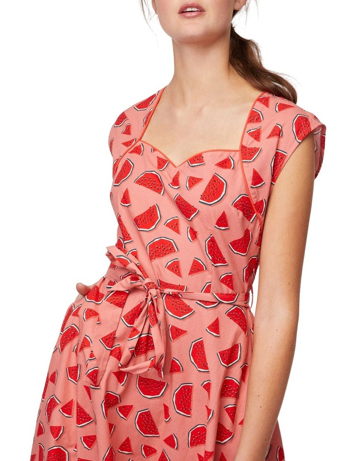 One In A Melon Dress image 4