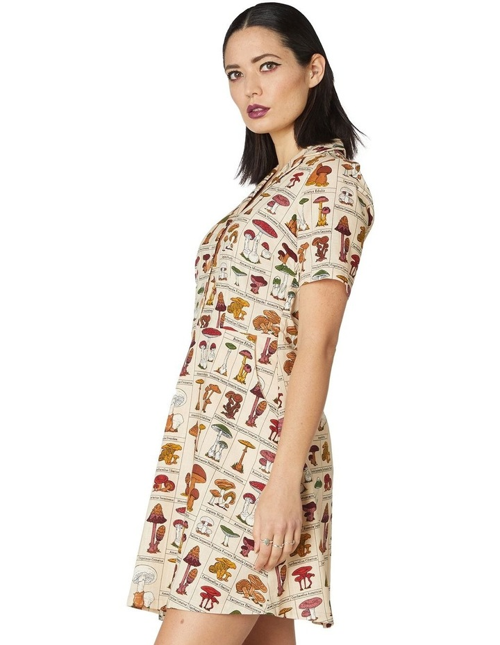Mushroom Variety Dress image 2