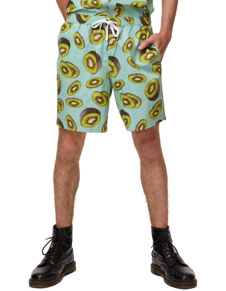 Kiwi Trunk image 1
