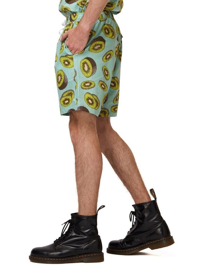 Kiwi Trunk image 2