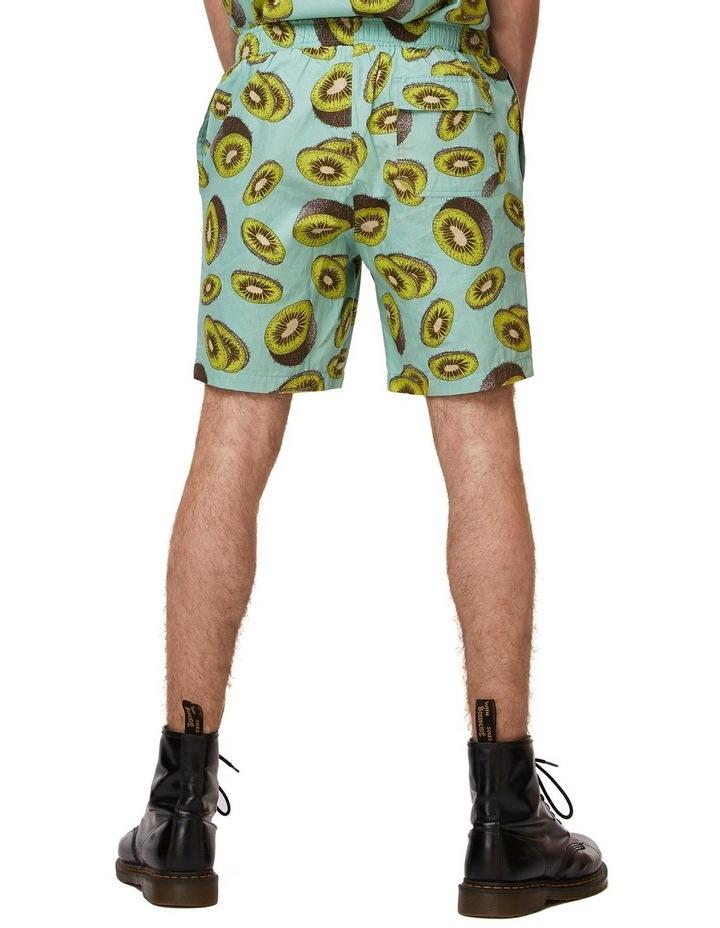 Kiwi Trunk image 3