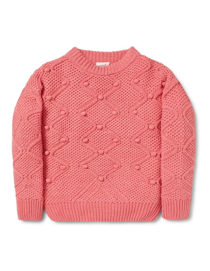 Bobble Sweater image 1