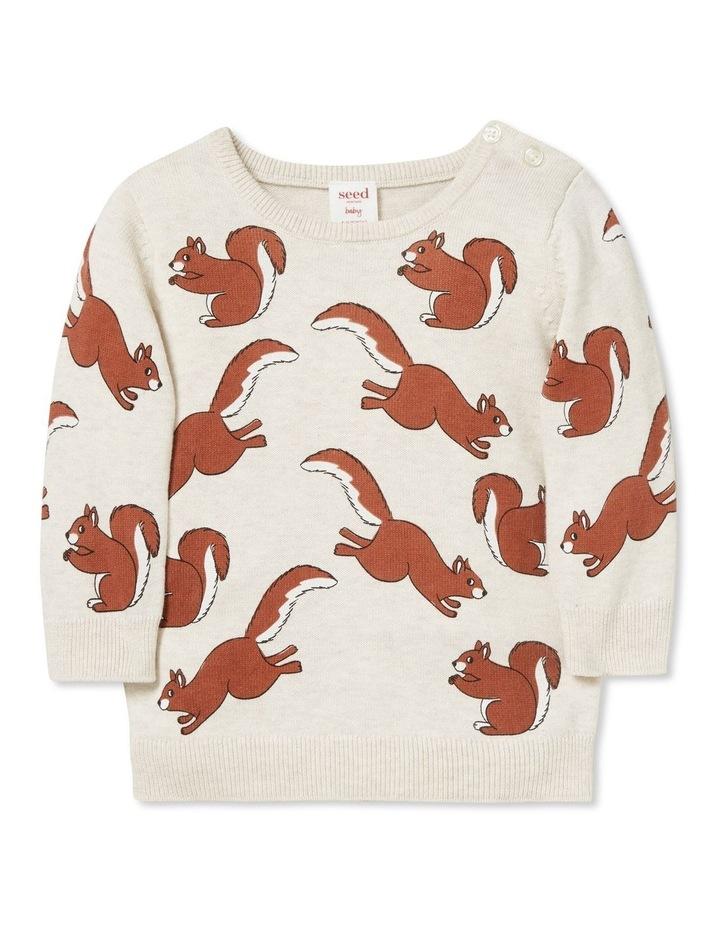 Squirrel Crew Knit image 1