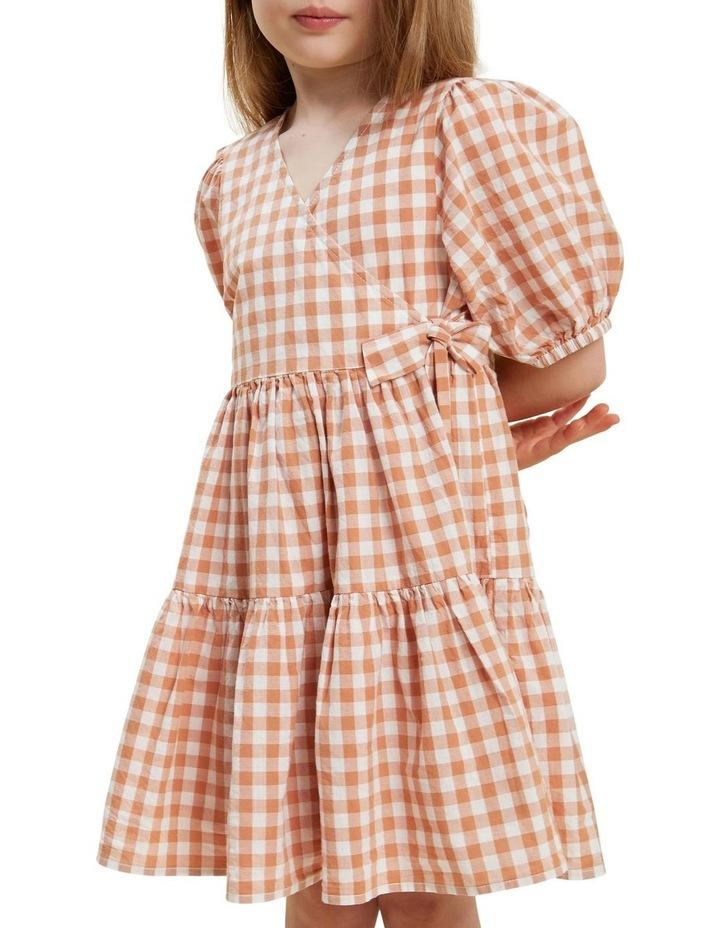 Gingham Dress image 5