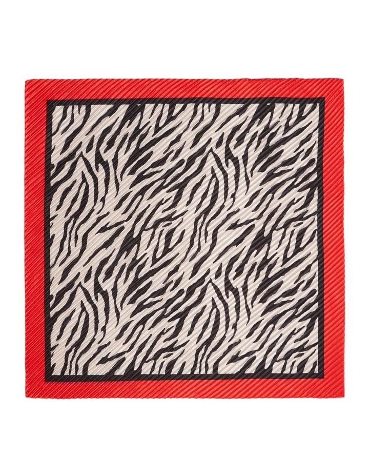Zebra Scarf image 2
