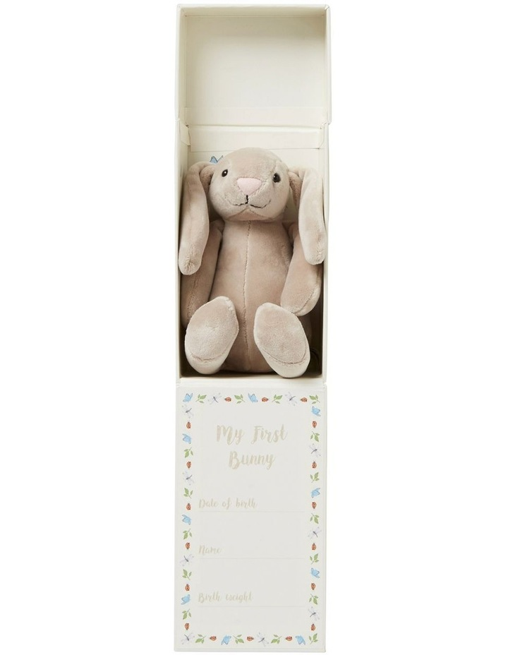 My First Bunny Box image 2
