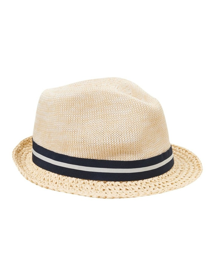 Woven Trilby Hat image 1