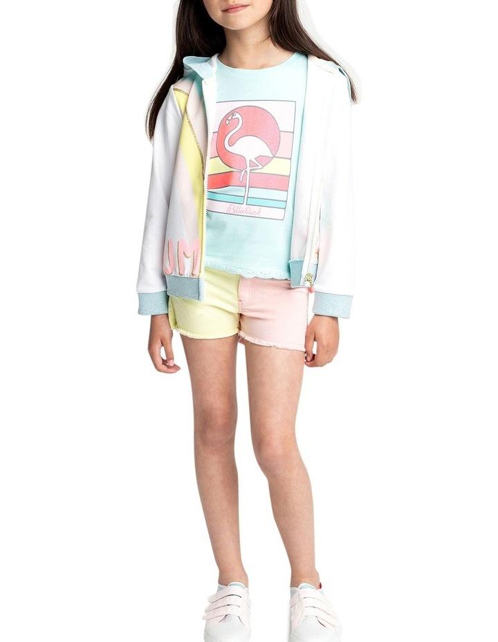 Multicoloured Twill Shorts image 3