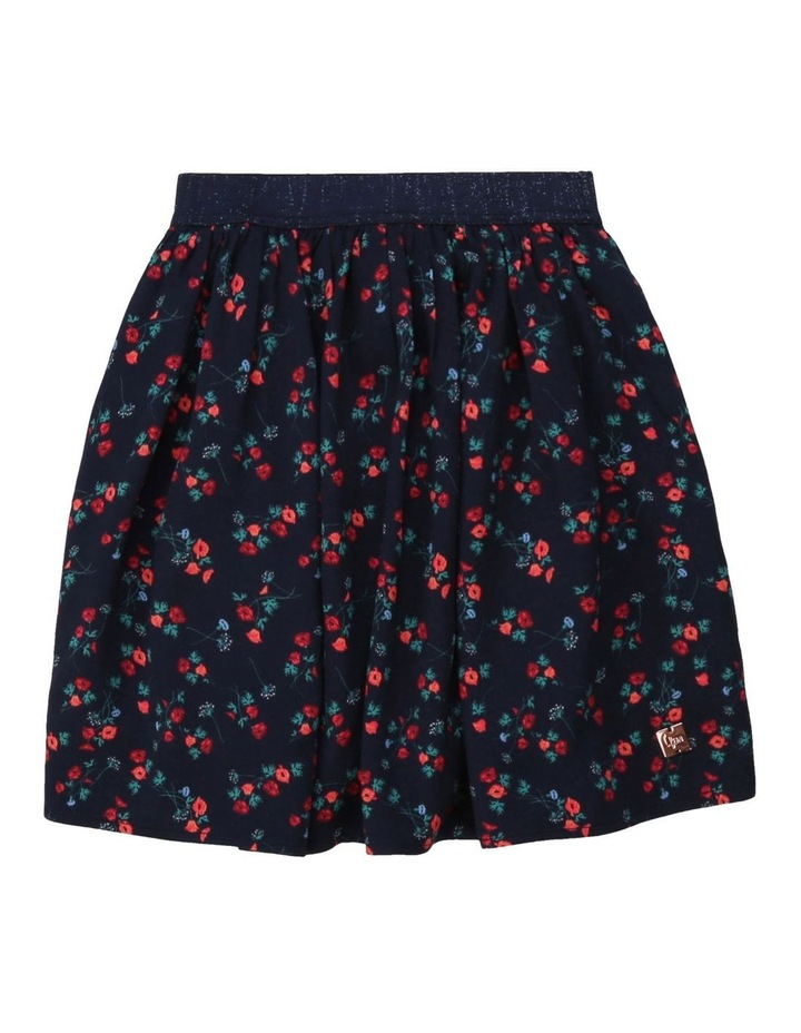 Viscose Skirt image 1