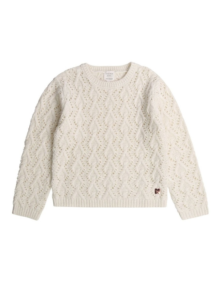 Fancy Knitted Jumper image 1