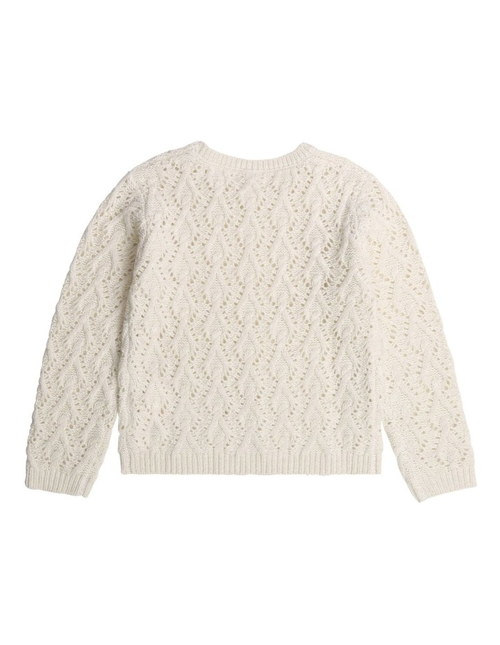 Fancy Knitted Jumper image 2