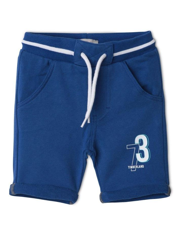 Suede Fleece Shorts image 1