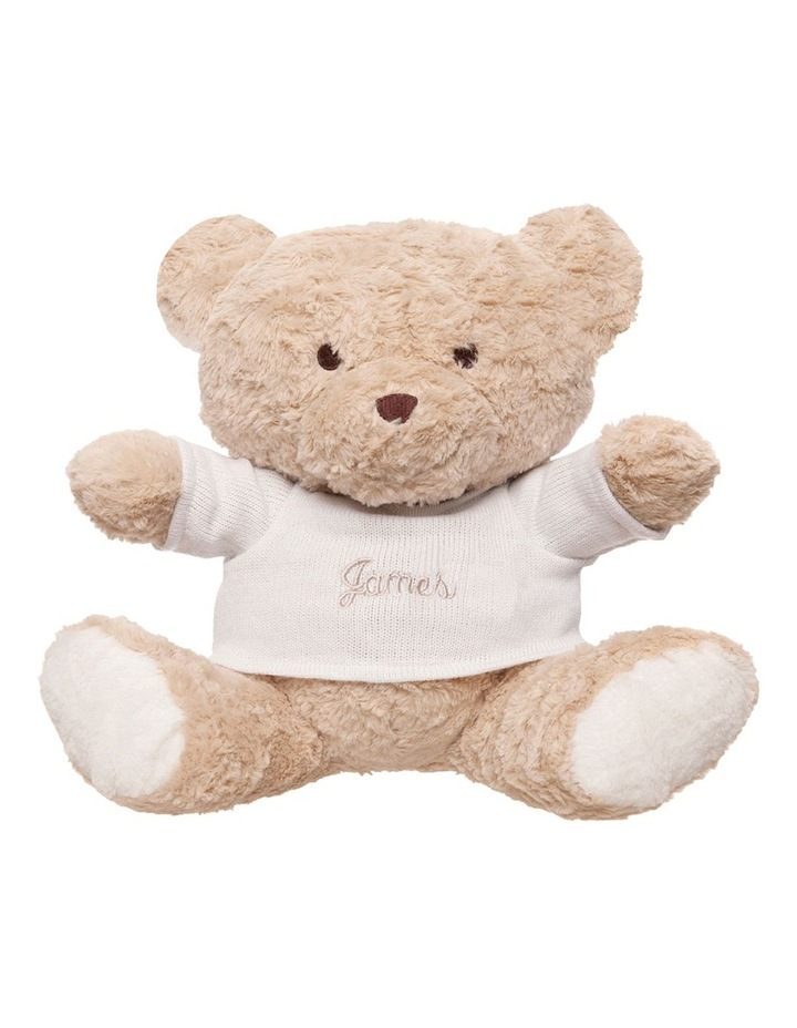 Personalised Plush Teddy Bear with Jumper image 1
