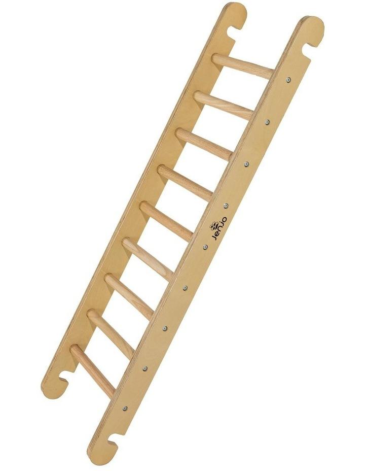 Ladder image 2