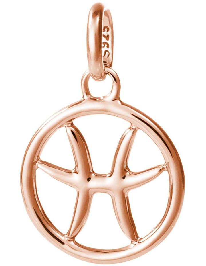 Pisces Zodiac Charm image 1