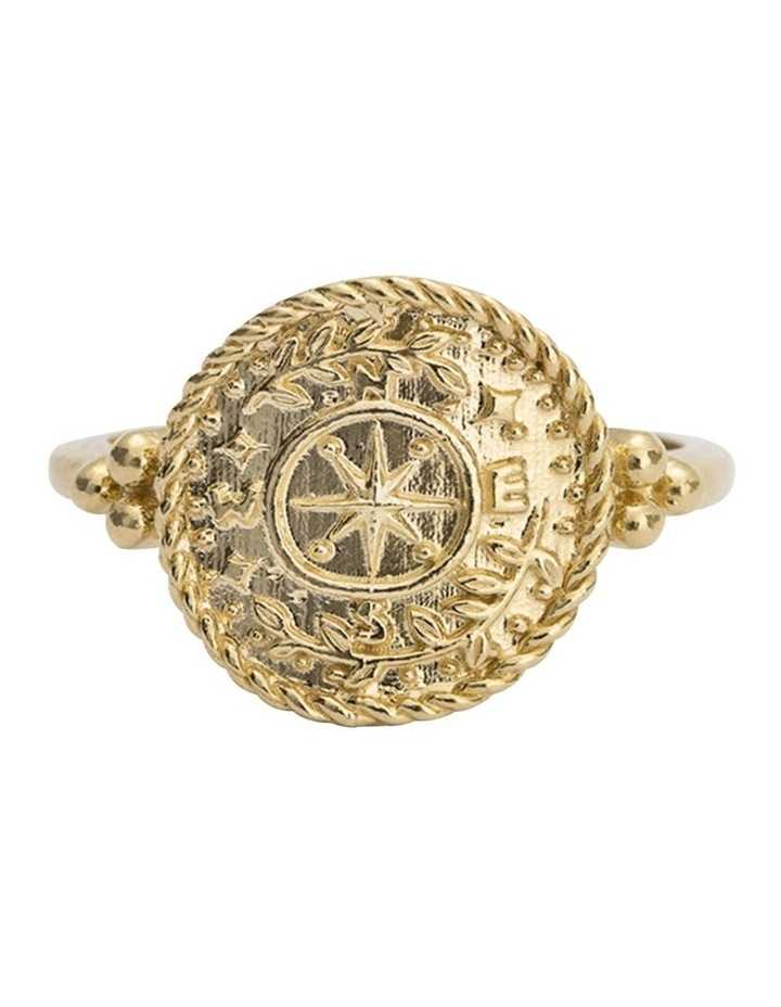 Treasure Coin Ring (18K-Gold-Vermeil) - Size 6 image 1