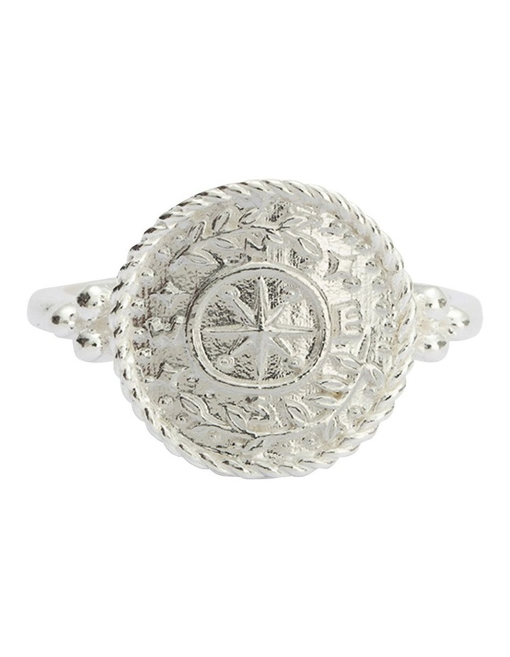 Treasure Coin Ring w/ Sterling Silver image 1
