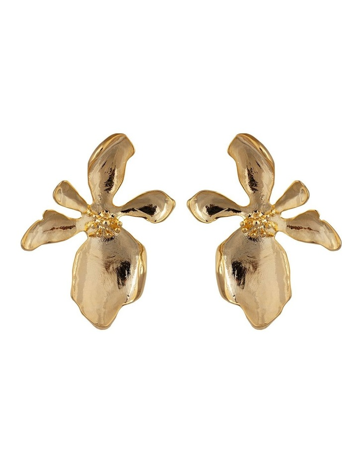 Isla Earrings image 1