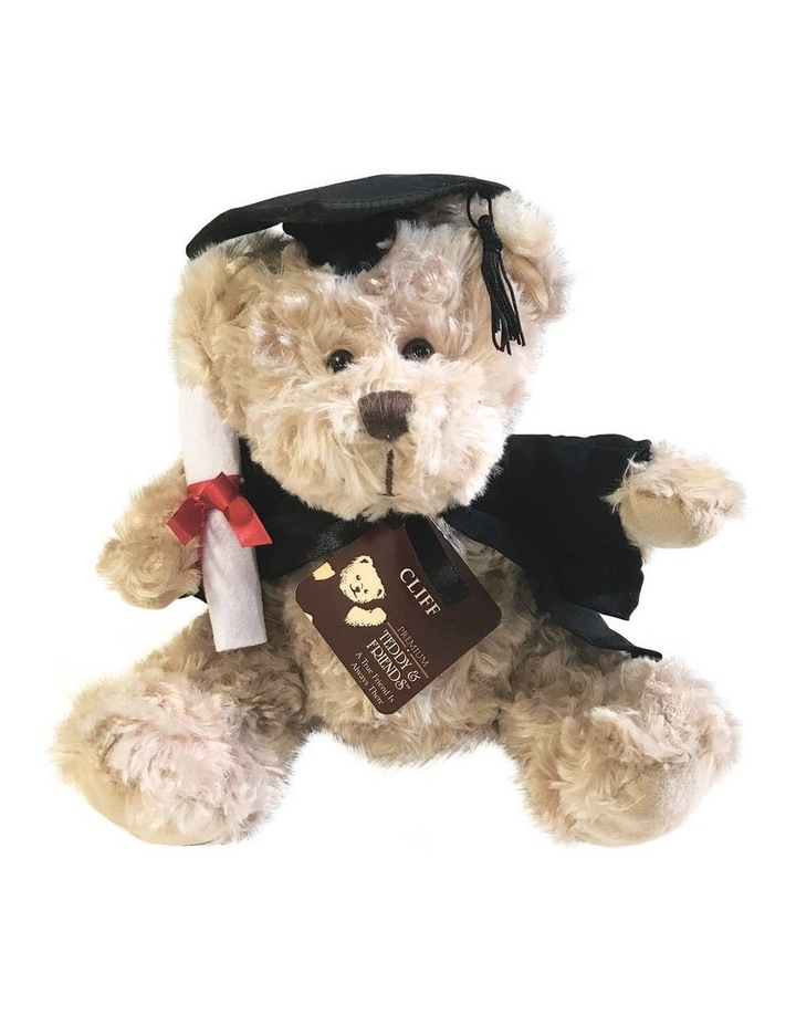 Cliff Graduation Bear 20cm image 1