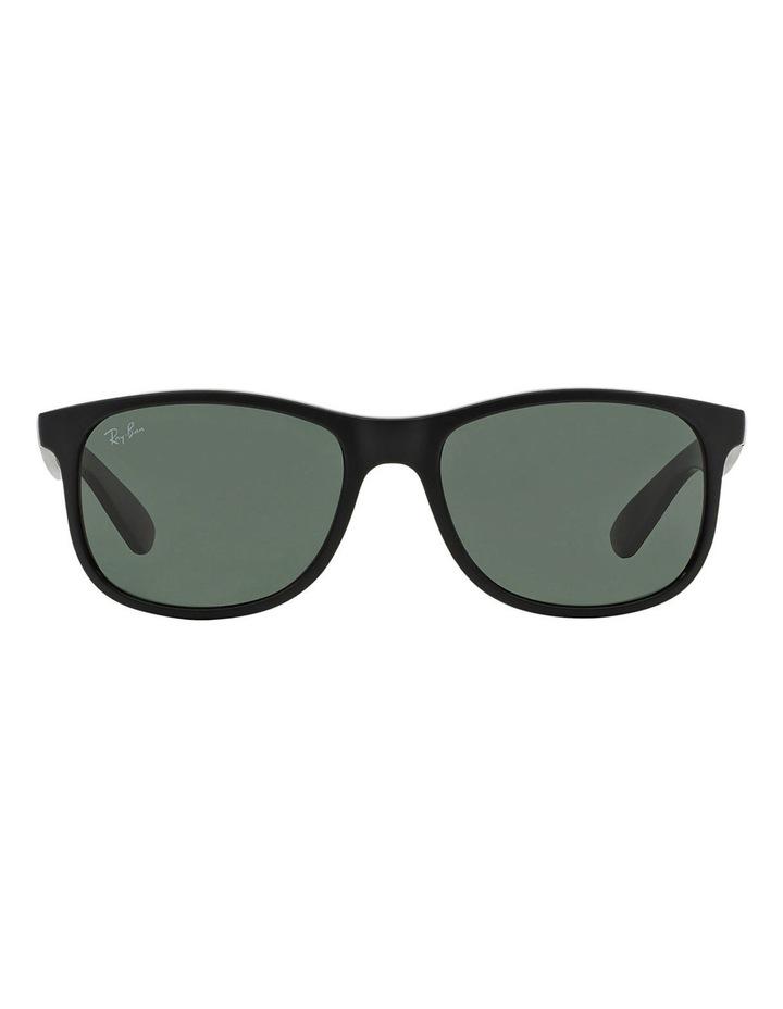 RB4202 359851 Sunglasses image 1